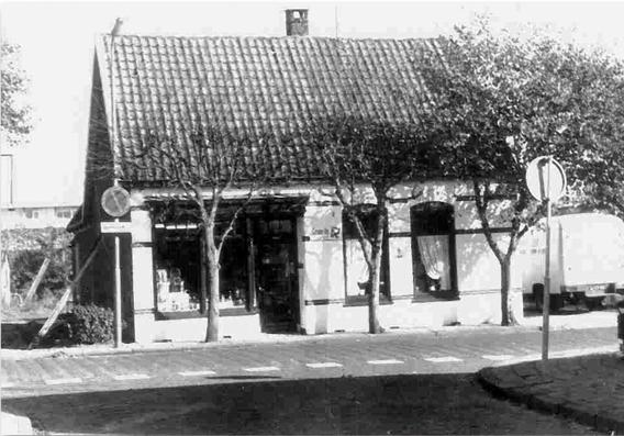 Dierenarts in Heemskerk - Historie
